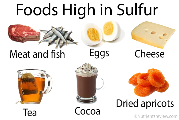 Foods-High-in-Sulfur