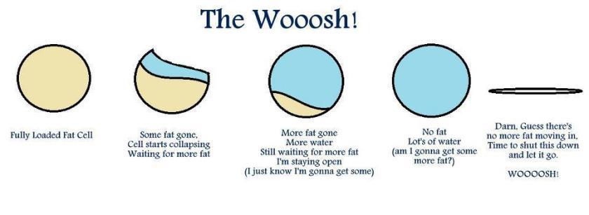whoosh (1)